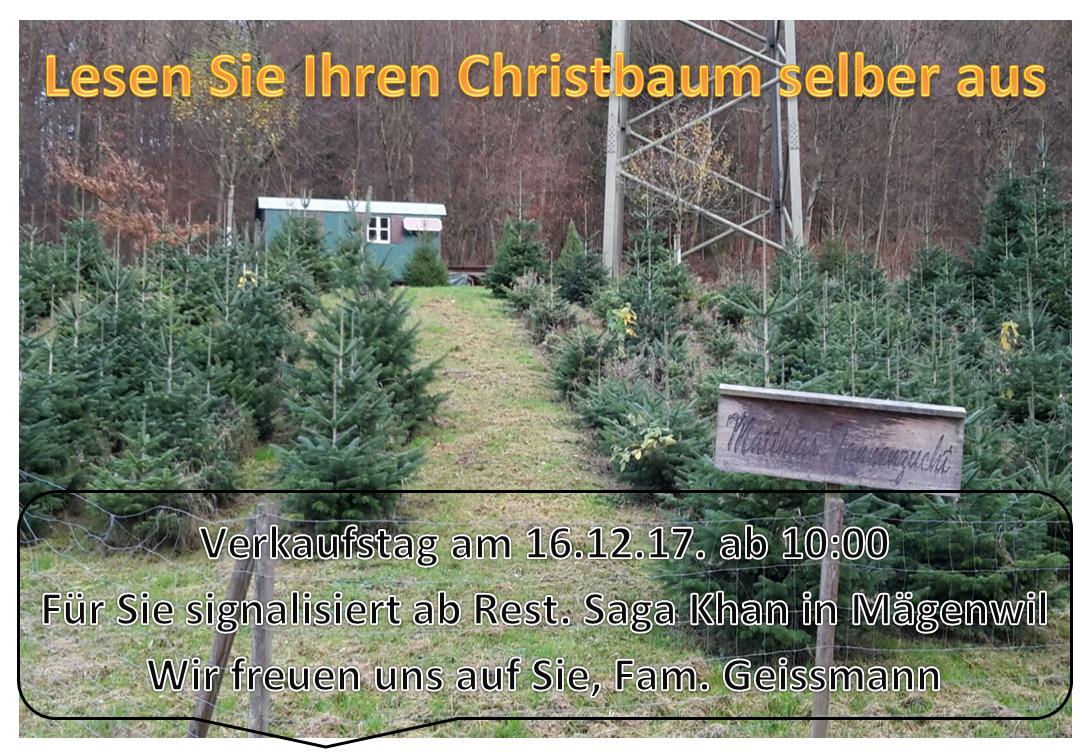 /_SYS_file/Bilder/Aktuelles/Weihnachten Geissmann 2017.jpg